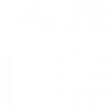 icon aleaPUBLIC